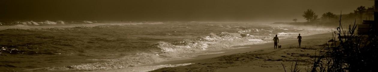 beach debris
