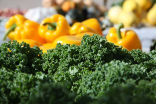 Farmers Market, West Palm Beach04
