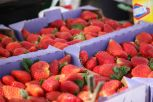 Farmers Market, West Palm Beach06